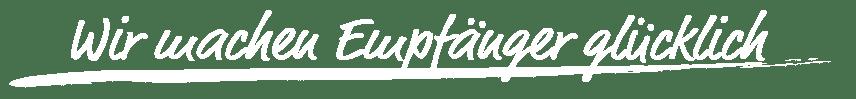 Vision Newsletter Software