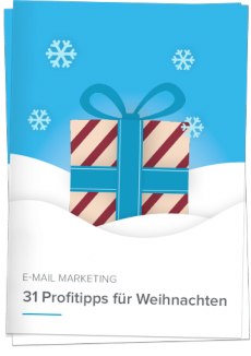 Whitepaper Profitipps für Weihnachtsnewsletter